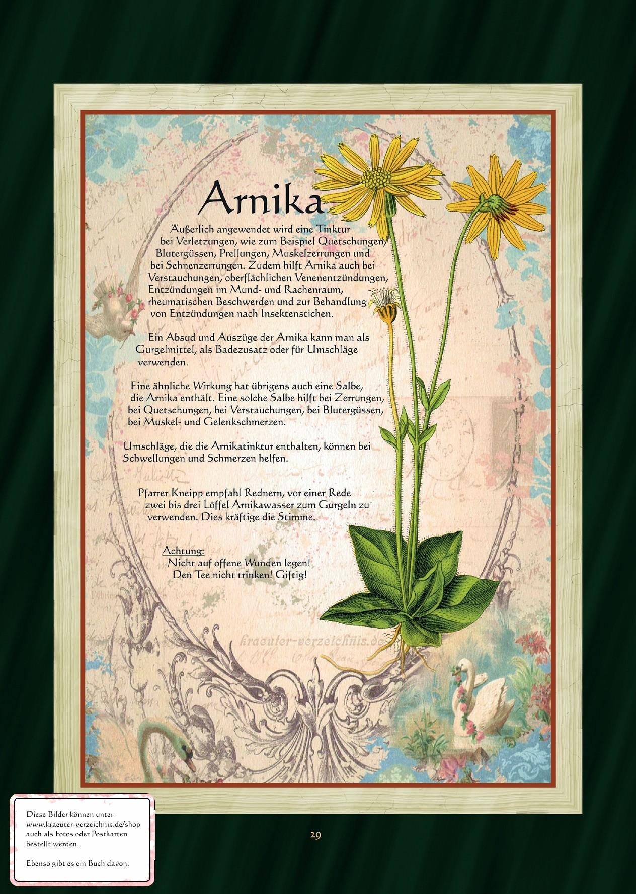 www.arnica.com.au pdf